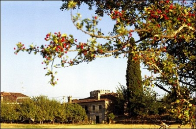 Casa Grande de Rosende